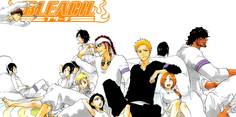 bleach we do knot always love you novela pdf